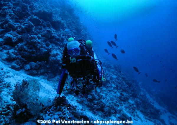 CR semaine plongée tek en CCR mer rouge avec ABYSS Dsc_0030