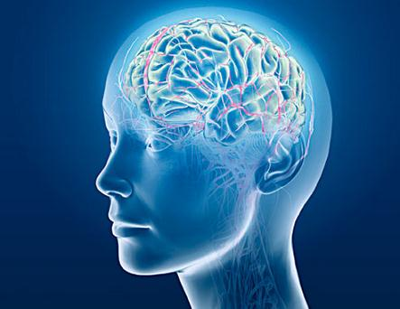 Truri Brain10