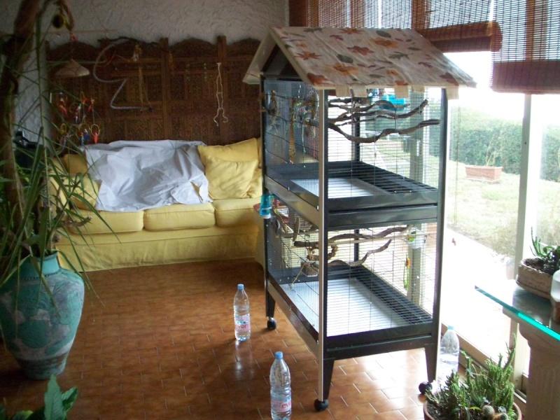Visite chez mes amis à plumes 100_2011