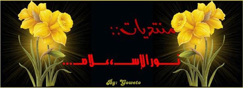 منتدى نور الإسلام