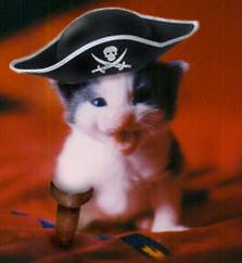 C'est le nanniversaire de Dulkera! Pirate10