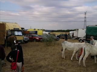 dia del caballo en villaviciosa Copia_13