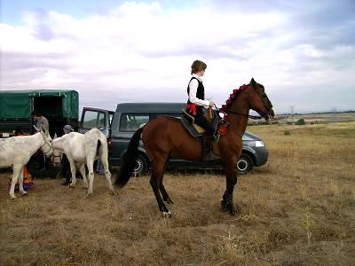 dia del caballo en villaviciosa Copia_14