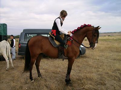 dia del caballo en villaviciosa Copia_15