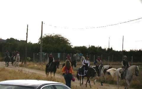 dia del caballo en villaviciosa Copia_19