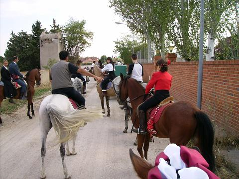dia del caballo en villaviciosa Copia_23