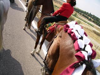 dia del caballo en villaviciosa Copia_25