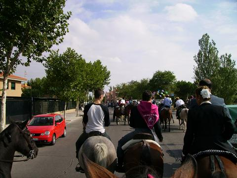 dia del caballo en villaviciosa Copia_28