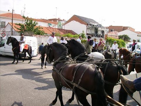 dia del caballo en villaviciosa Copia_29