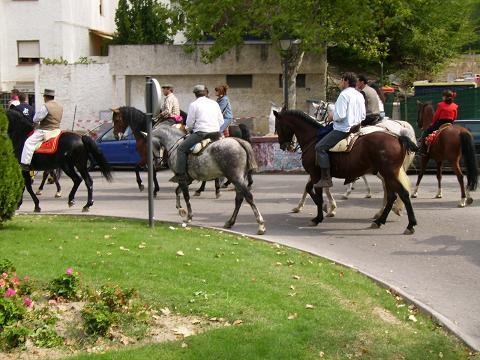 dia del caballo en villaviciosa Copia_30
