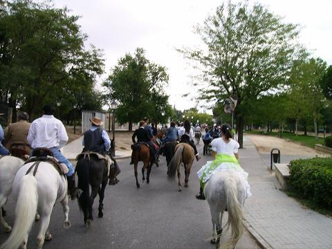 dia del caballo en villaviciosa Copia_31