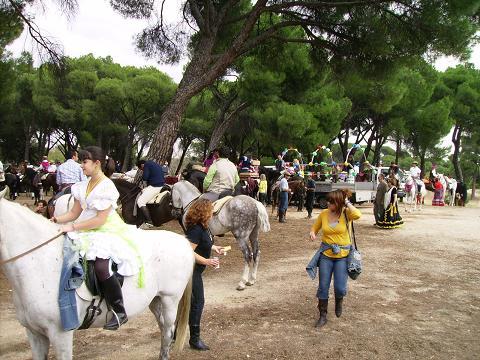 dia del caballo en villaviciosa Copia_32