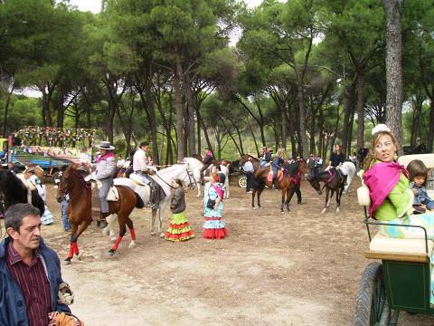 dia del caballo en villaviciosa Copia_33