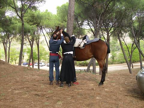 dia del caballo en villaviciosa Copia_37