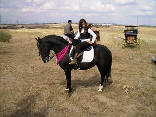 dia del caballo en villaviciosa Copia_43