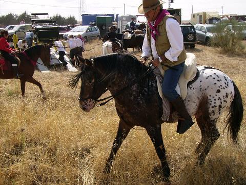 dia del caballo en villaviciosa Copia_44