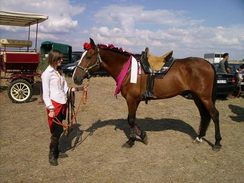 dia del caballo en villaviciosa Copia_46