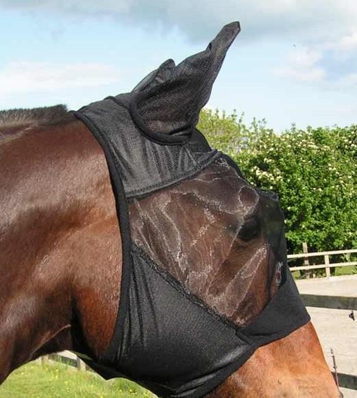 Les masques et autres protections ! Hhjg10