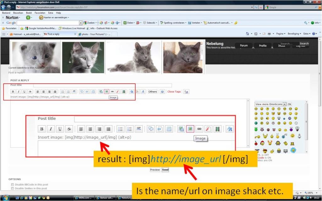 Adding an image Upload13