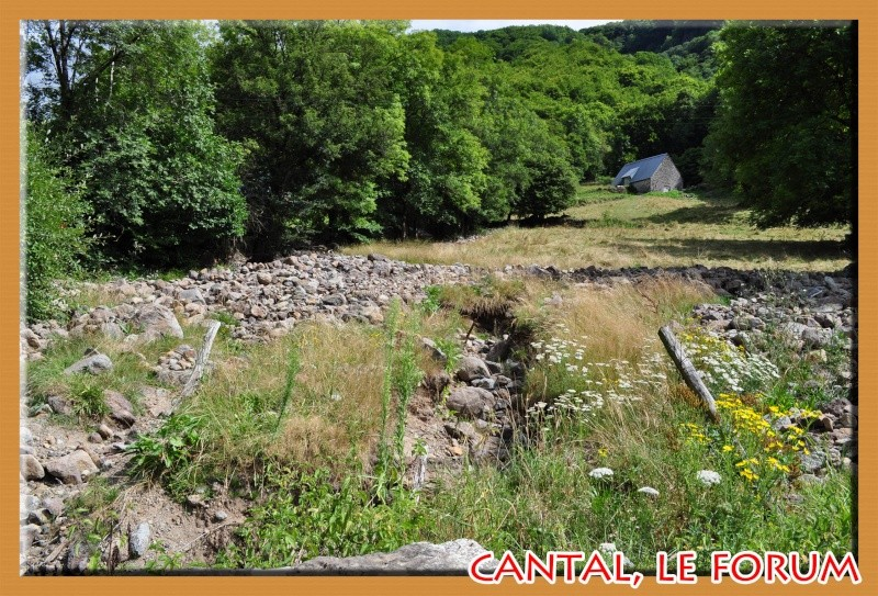 A quelques pas du Col d'Aulac... - Page 2 Dsc_3611