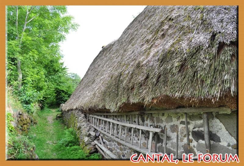 Le Cantal en 2012 Dsc_3817