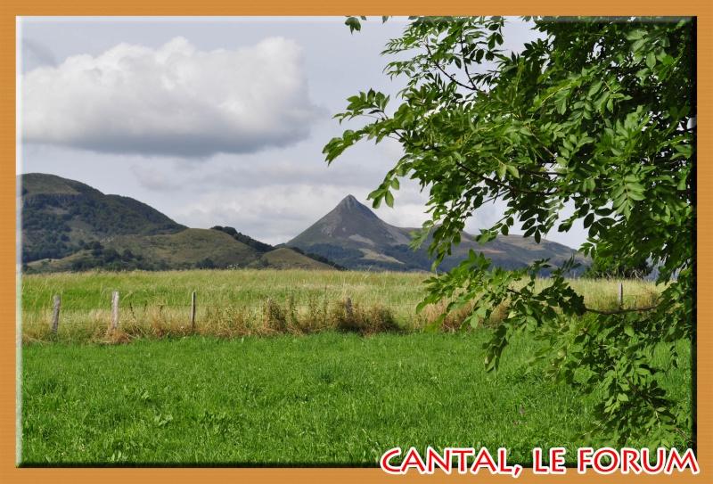 Le Cantal en 2012 Dsc_3820