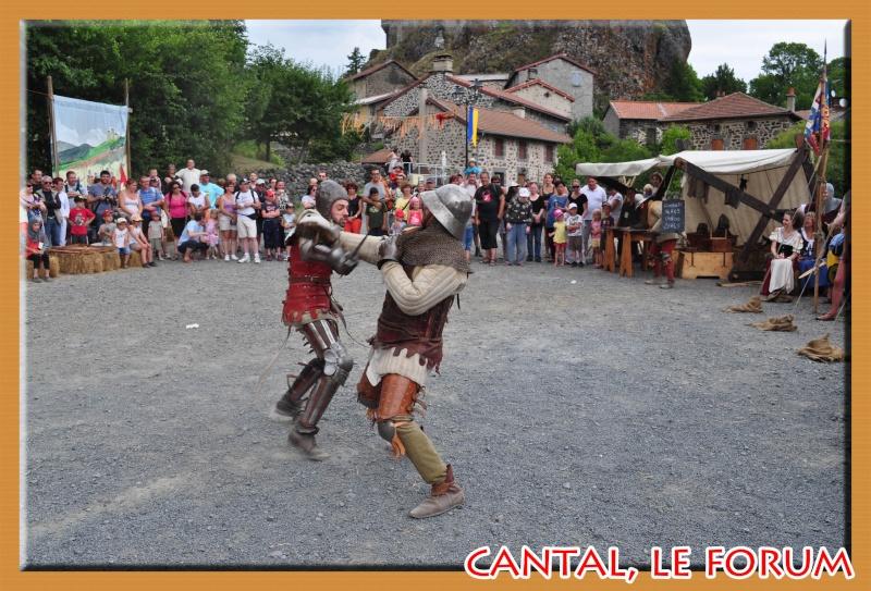 Le Cantal en 2012 Dsc_4014