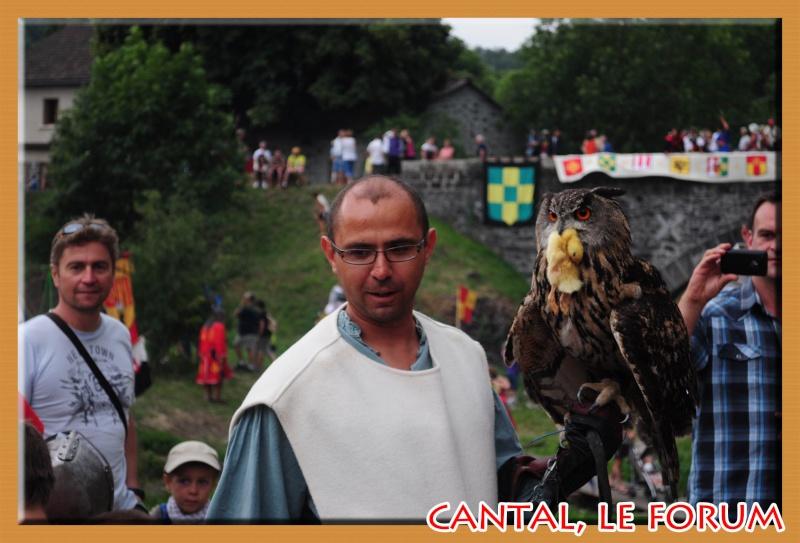 Le Cantal en 2012 Dsc_4211