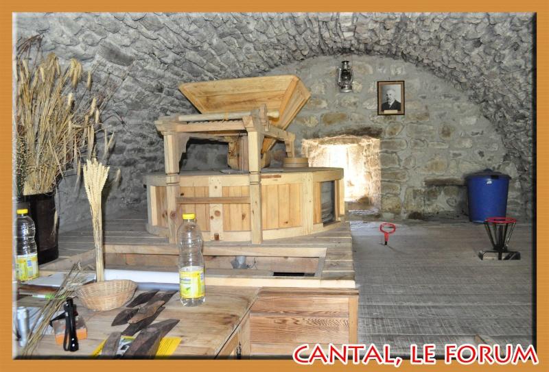Moulin à eau de La Gazelle (Segur les Villas) Dsc_4412