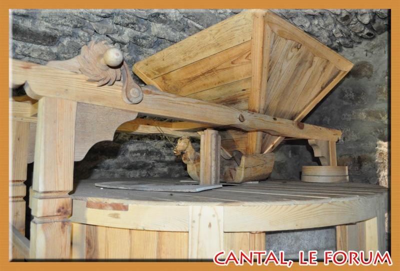 Moulin à eau de La Gazelle (Segur les Villas) Dsc_4416