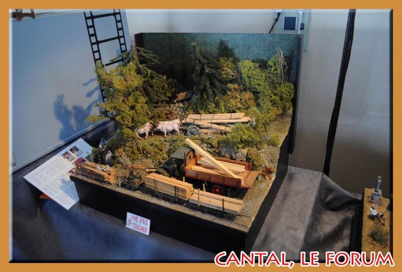 Le Cantal en 2012 Dsc_4516