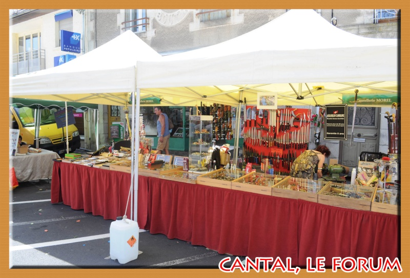 Le Cantal en 2012 Dsc_4519