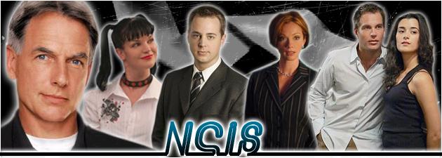 NCIS RPG Ncis311