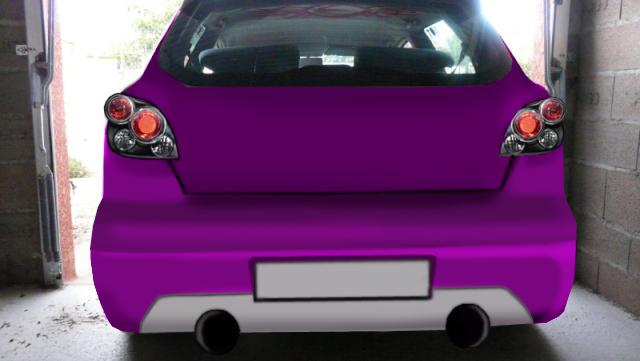 notre show car (fiat bravo) P1030611