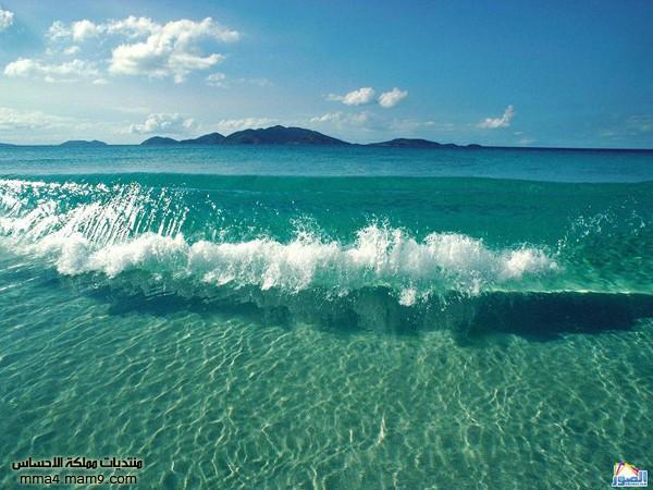 صور لشوااااطئ رائعة تستحق المشاهدة 1011