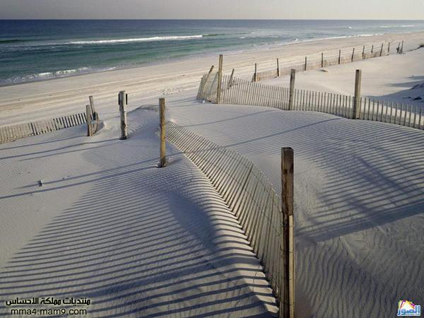 صور لشوااااطئ رائعة تستحق المشاهدة 1111