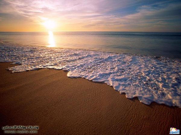 صور لشوااااطئ رائعة تستحق المشاهدة 114
