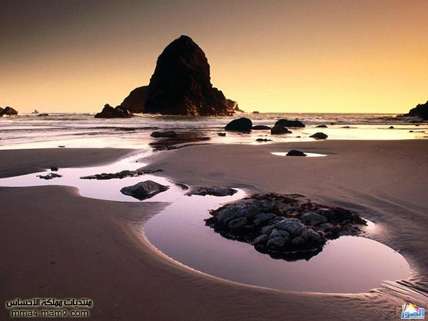 صور لشوااااطئ رائعة تستحق المشاهدة 413