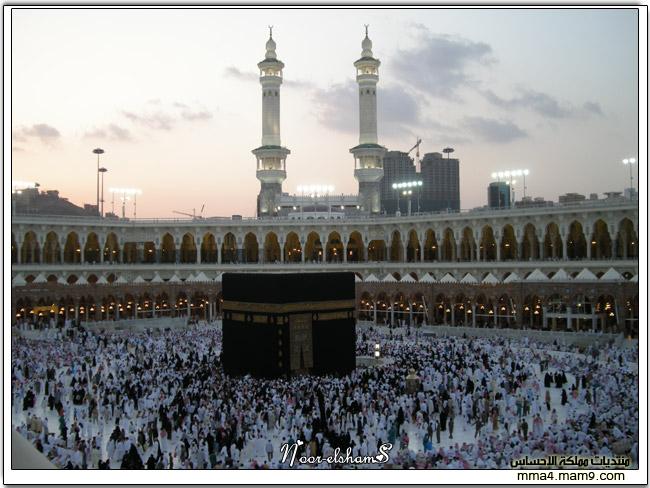 فندق موفنبيك برج هاجر مكة ..  5110