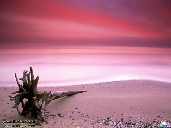 صور لشوااااطئ رائعة تستحق المشاهدة 612