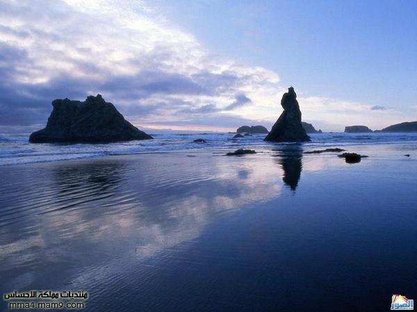 صور لشوااااطئ رائعة تستحق المشاهدة 712