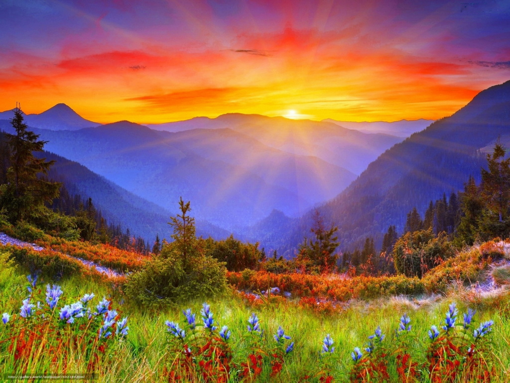 Couchers de soleil.... magnifiques !!! 53219410