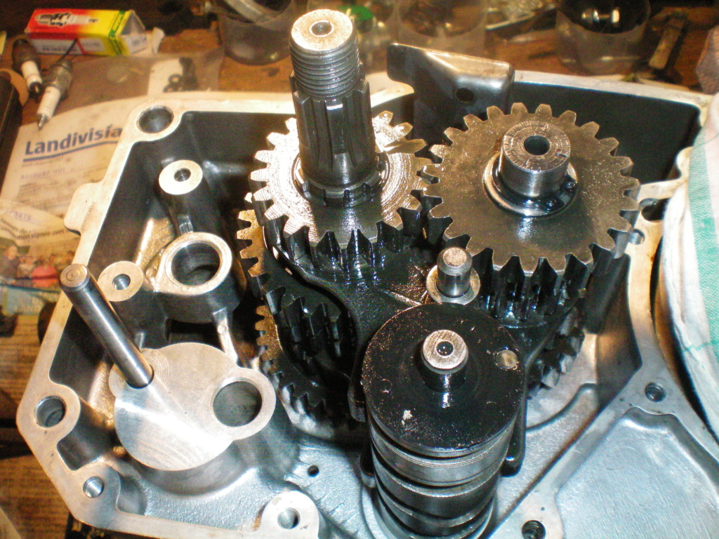 Réfection moteur 250 ETZ 100_0638