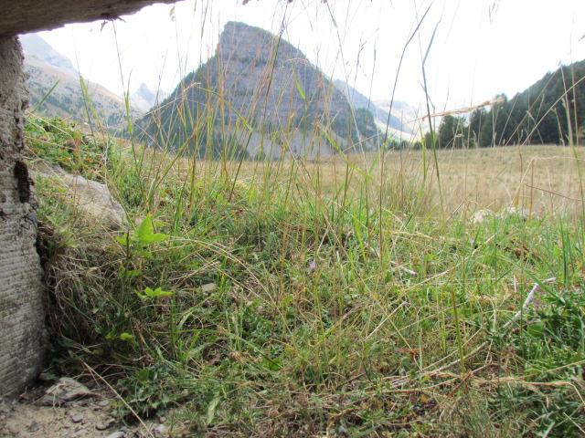 bunker dans l'ubaye 15 Aout Lac_de15