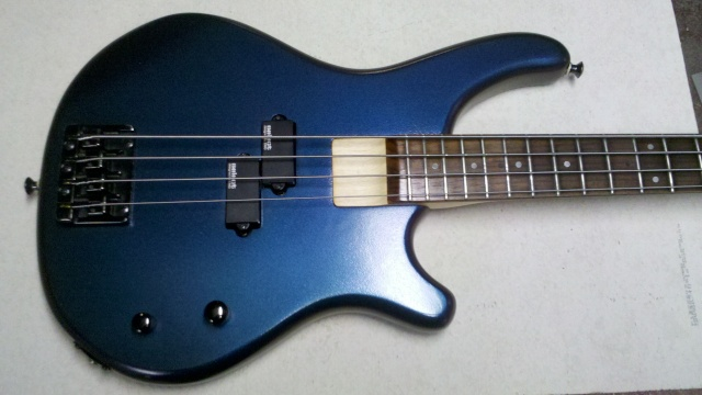 Washburn B Series