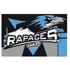 [PO] Gap 3 - 1 Epinal (Finale, 5ème match, le 31 mars 2015) - Page 4 Logo_g10