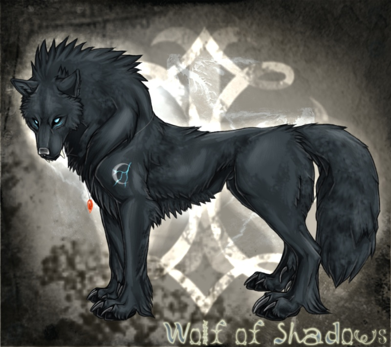 Alexander Rider Wolf_o10