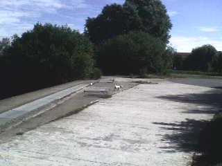 Petit chien blanc impossible à attraper Armentières-Houplines Dsc00210