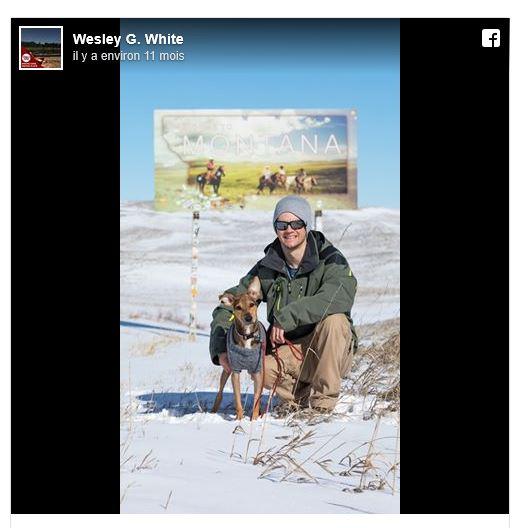 Un photographe en visite sur une petite île déserte découvre un chien affamé qui changera sa vie Capt_211