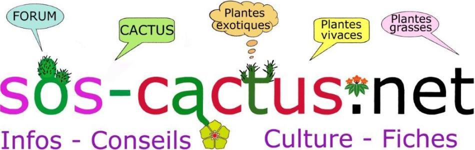 SOS-CACTUS.NET